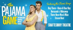 (shaftesburytheatre.com)